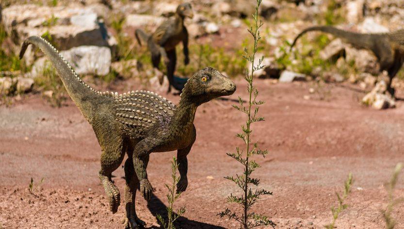 nomi dinosauri